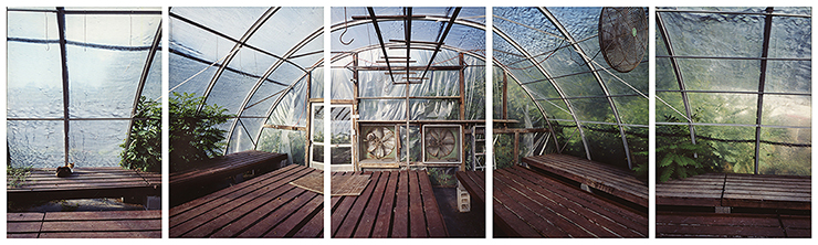 Esther Pullman, Marshall's Farm Stand Greenhouse, late summer, West Gloucester, MA 2006.