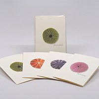 Sea Urchin Assortment Boxed Note Card Set